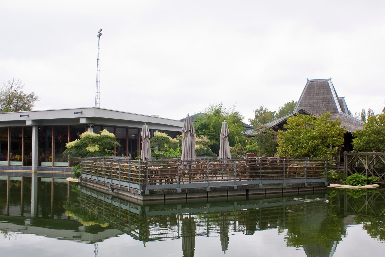 Verrassend Azië, Planckendael, Muizen-Mechelen